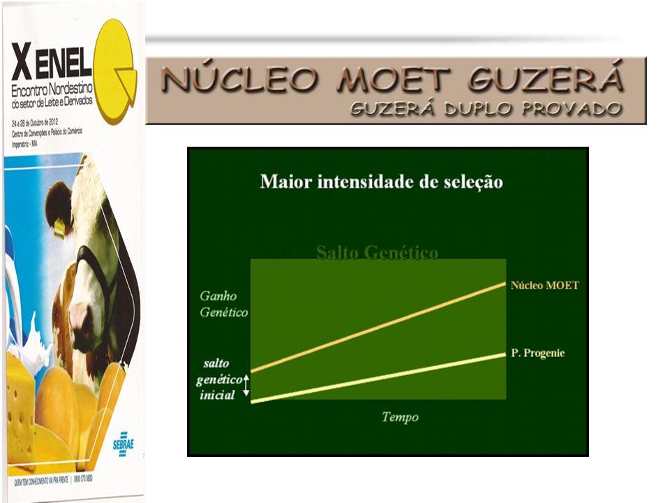 Profa. Dra. Marília Martins cljm@uol.com.br