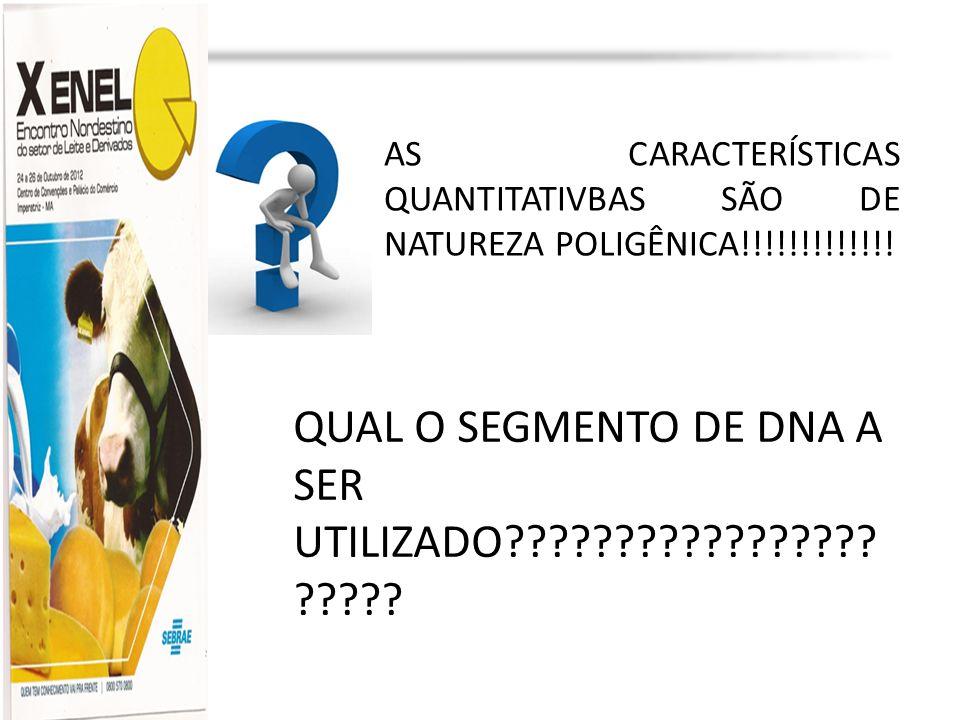 Profa. Dra. Marília Martins cljm@uol.com.br AS CARACTERÍSTICAS QUANTITATIVBAS SÃO DE NATUREZA POLIGÊNICA!!!!!!!!!!!!! QUAL O SEGMENTO DE DNA A SER UTI
