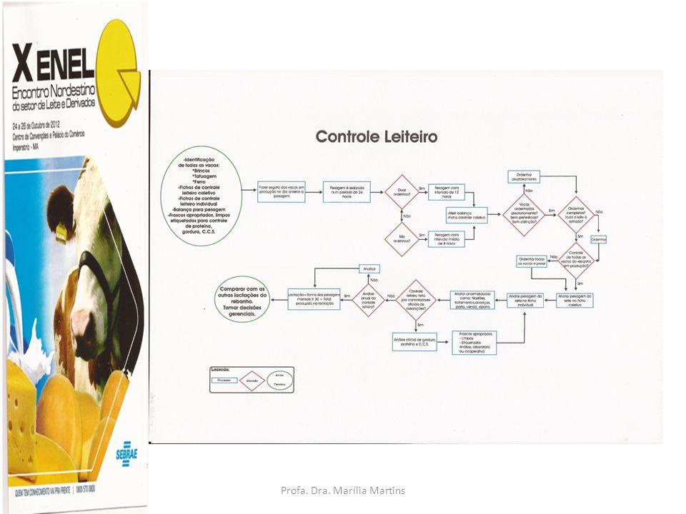 Profa. Dra. Marília Martins cljm@uol.com.br BIOTECNOLOGIAS E SUAS APLICAÇÕES