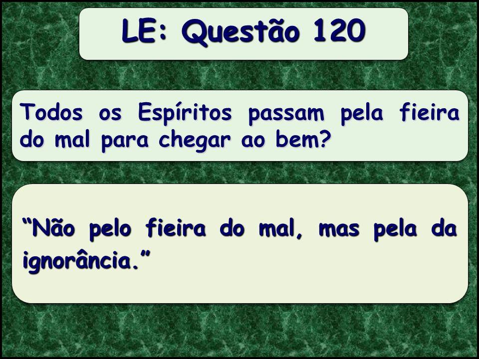 Os Espíritos podem degenerar? LE: Questão 118 Não; à medida que avançam, compreendem o que os distanciava da perfeição. Quando o Espírito termina uma