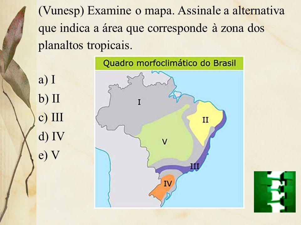 (Vunesp) Examine o mapa. Assinale a alternativa que indica a área que corresponde à zona dos planaltos tropicais. a) I b) II c) III d) IV e) V