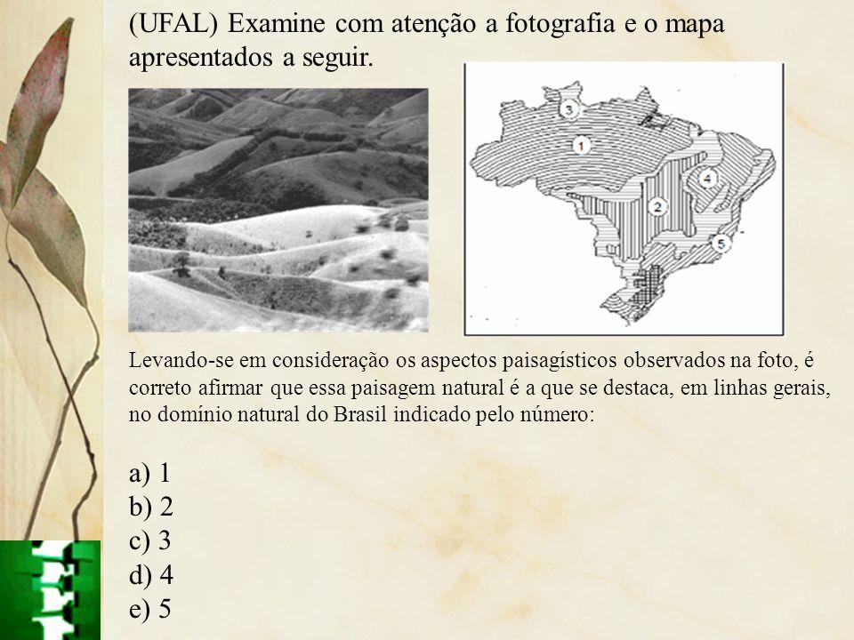 (UFAL) Examine com atenção a fotografia e o mapa apresentados a seguir. Levando-se em consideração os aspectos paisagísticos observados na foto, é cor