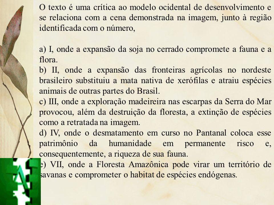 O texto é uma crítica ao modelo ocidental de desenvolvimento e se relaciona com a cena demonstrada na imagem, junto à região identificada com o número