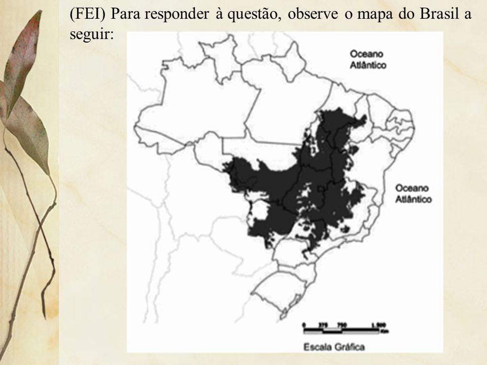 (FEI) Para responder à questão, observe o mapa do Brasil a seguir: