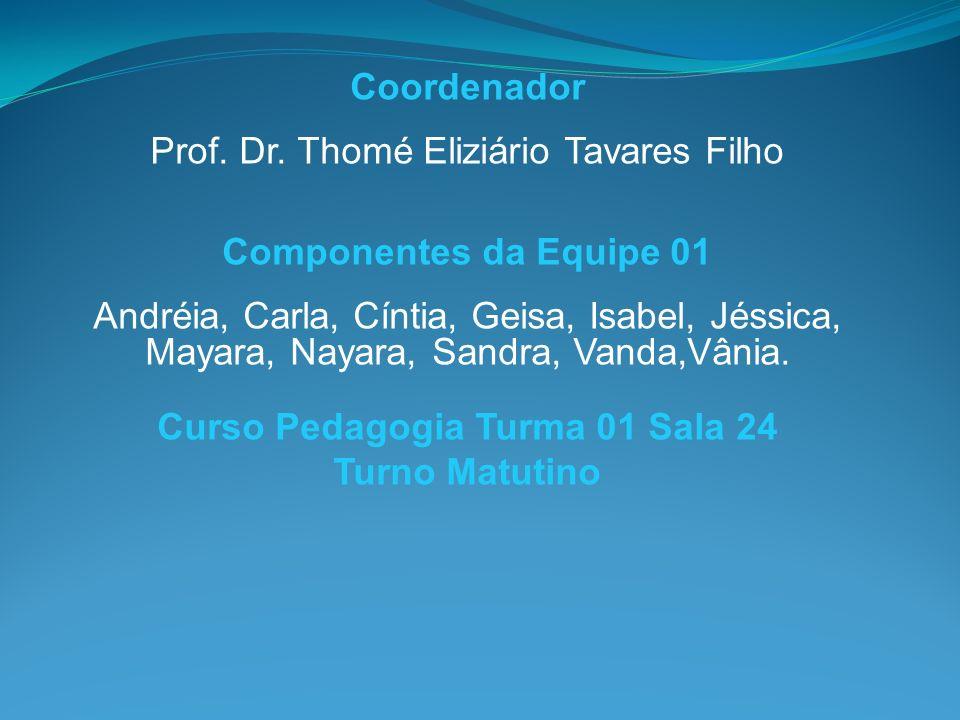 Coordenador Prof. Dr. Thomé Eliziário Tavares Filho Componentes da Equipe 01 Andréia, Carla, Cíntia, Geisa, Isabel, Jéssica, Mayara, Nayara, Sandra, V