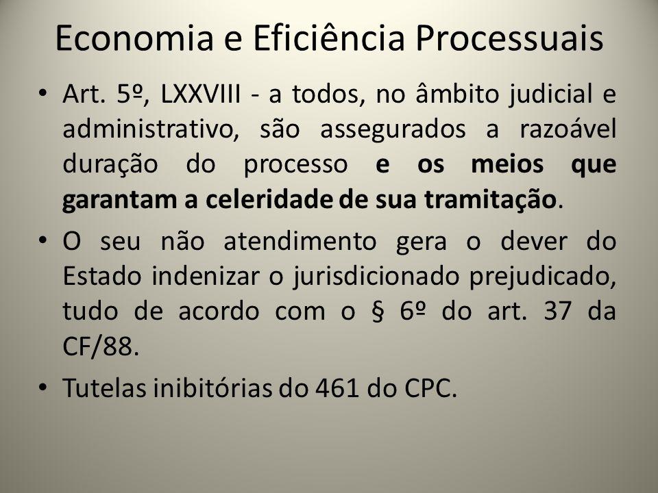 Economia e Eficiência Processuais Art. 5º, LXXVIII - a todos, no âmbito judicial e administrativo, são assegurados a razoável duração do processo e os