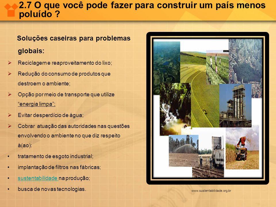 2.7 O que você pode fazer para construir um país menos poluído ? Soluções caseiras para problemas globais: Reciclagem e reaproveitamento do lixo; Redu
