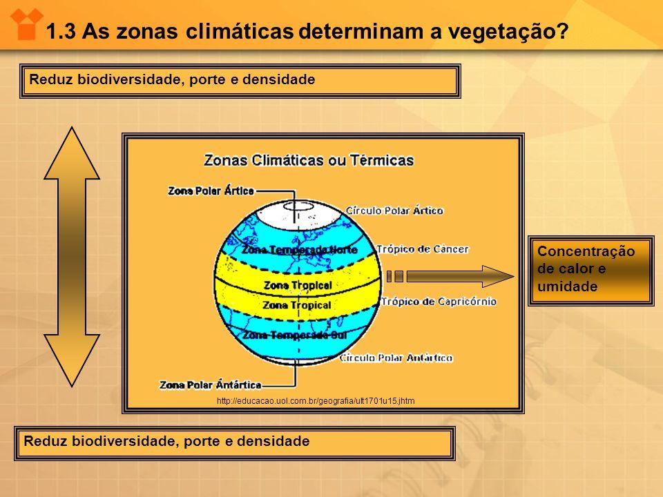 1.3 As zonas climáticas determinam a vegetação? Reduz biodiversidade, porte e densidade Concentração de calor e umidade http://educacao.uol.com.br/geo