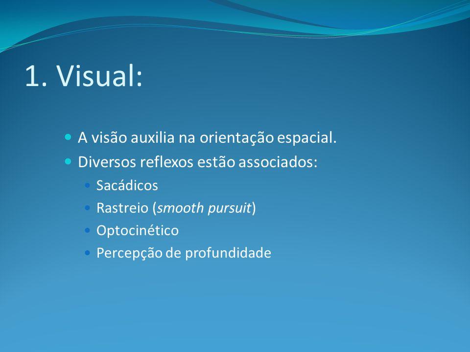 1. Visual: A visão auxilia na orientação espacial. Diversos reflexos estão associados: Sacádicos Rastreio (smooth pursuit) Optocinético Percepção de p