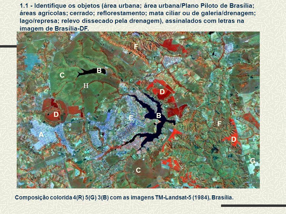 Composição colorida 4(R) 5(G) 3(B) com as imagens TM-Landsat-5 (1984), Brasília. A B C D D E F F 1.1 - Identifique os objetos (área urbana; área urban
