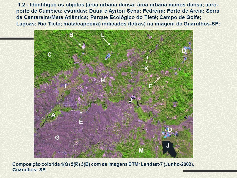 G 1.2 - Identifique os objetos (área urbana densa; área urbana menos densa; aero- porto de Cumbica; estradas: Dutra e Ayrton Sena; Pedreira; Porto de