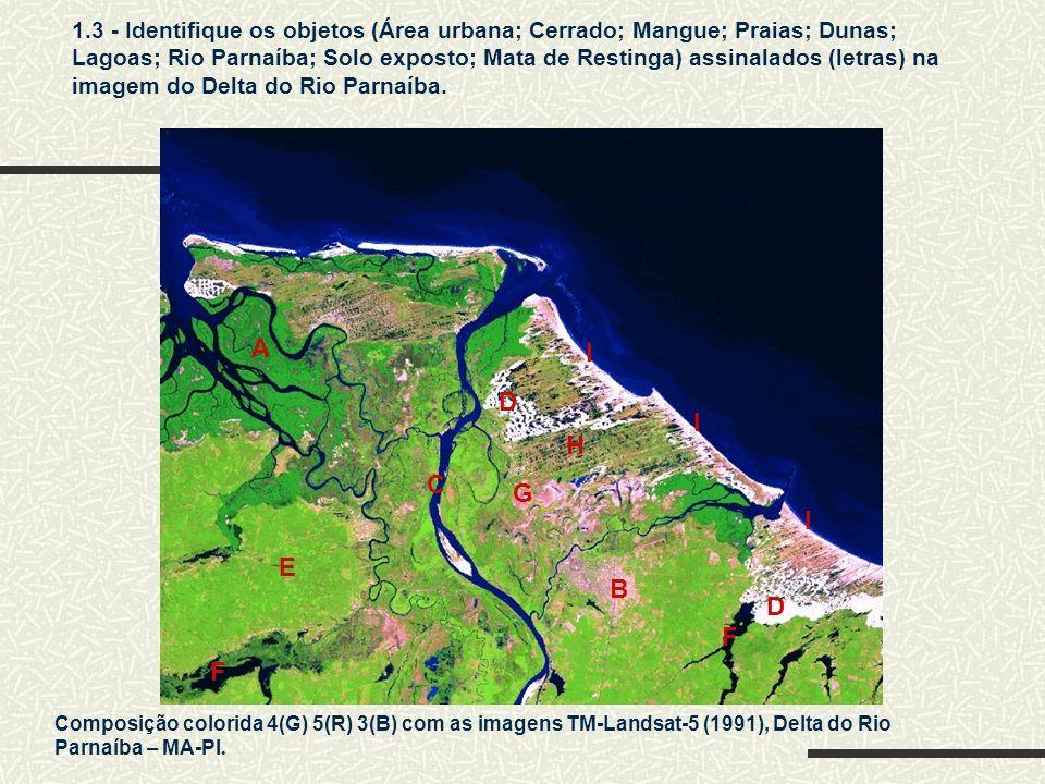 Composição colorida 4(G) 5(R) 3(B) com as imagens TM-Landsat-5 (1991), Delta do Rio Parnaíba – MA-PI. 1.3 - Identifique os objetos (Área urbana; Cerra