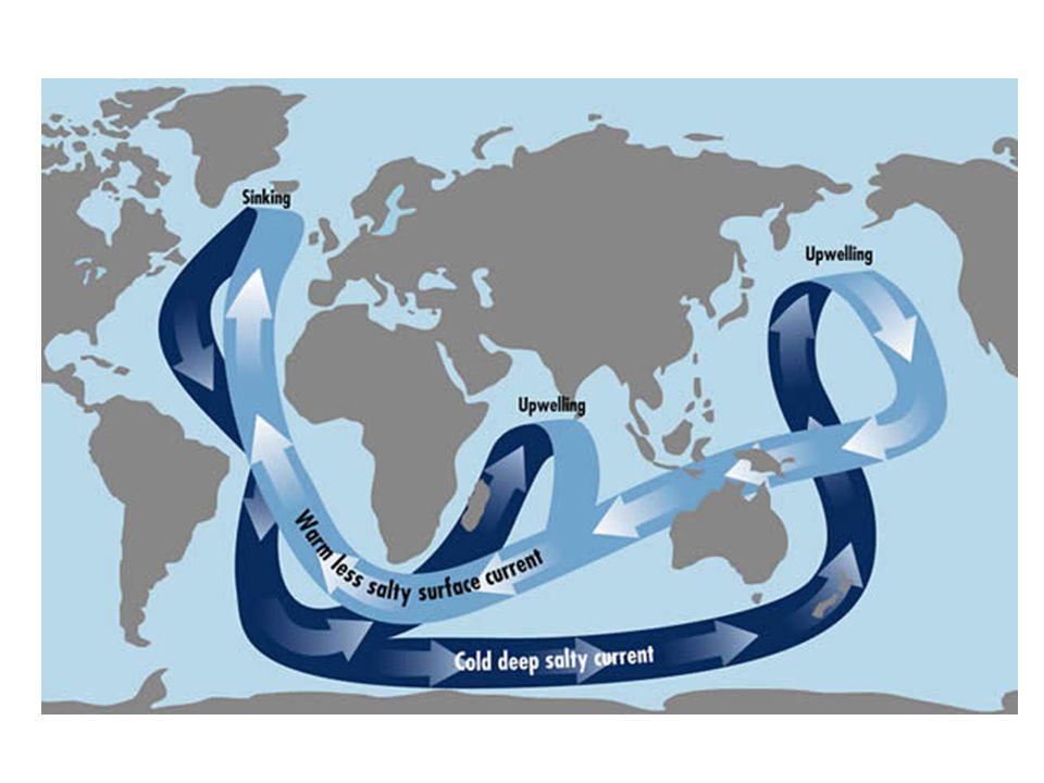 Carbono Inorgânico Dissolvido – DIC DIC = H 2 CO 3 + HCO 3 - + CO 3 -2 CO 2 + H 2 O H 2 CO 3 H + + HCO 3 - H + + CO 3 -2 Fluxo Ar-Oceano: 90 x 10 15 g Fluxo Oceano-Ar: 88 x 10 15 g