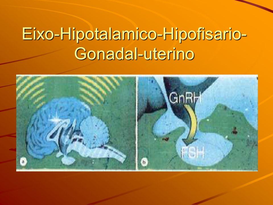 Eixo-Hipotalamico-Hipofisario- Gonadal-uterino
