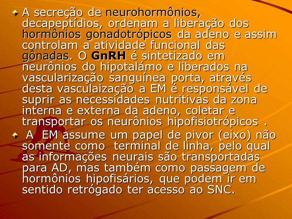 A secreção de neurohormônios, decapeptídios, ordenam a liberação dos hormônios gonadotrópicos da adeno e assim controlam a atividade funcional das gôn