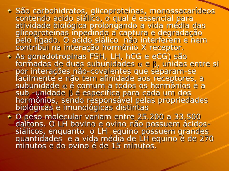 São carbohidratos, glicoproteínas, monossacarídeos contendo acido siálico, o qual é essencial para atividade biológica prolongando a vida média das gl