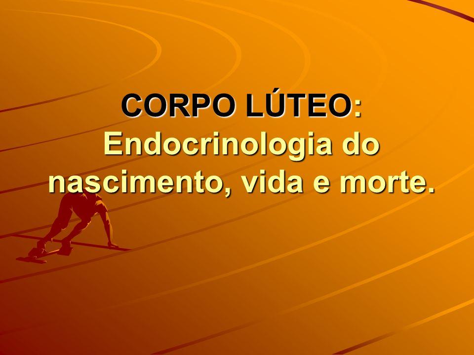 CORPO LÚTEO: Endocrinologia do nascimento, vida e morte.