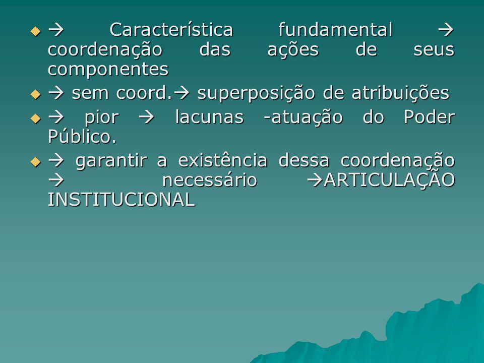 Característica fundamental coordenação das ações de seus componentes Característica fundamental coordenação das ações de seus componentes sem coord. s
