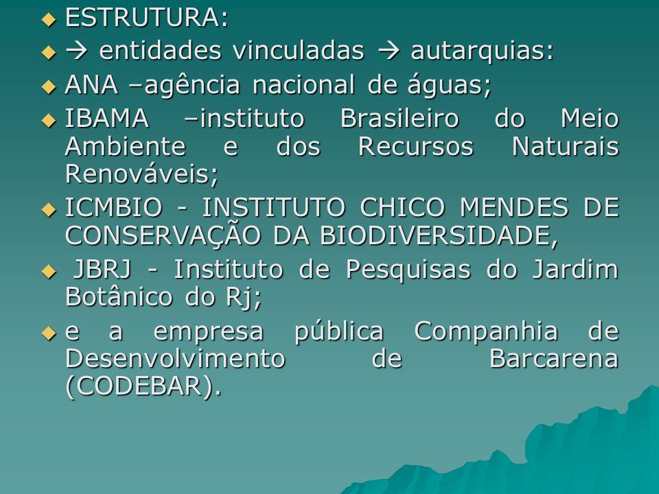 ESTRUTURA: ESTRUTURA: entidades vinculadas autarquias: entidades vinculadas autarquias: ANA –agência nacional de águas; ANA –agência nacional de águas