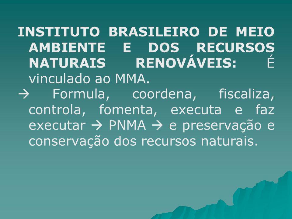INSTITUTO BRASILEIRO DE MEIO AMBIENTE E DOS RECURSOS NATURAIS RENOVÁVEIS: É vinculado ao MMA. Formula, coordena, fiscaliza, controla, fomenta, executa