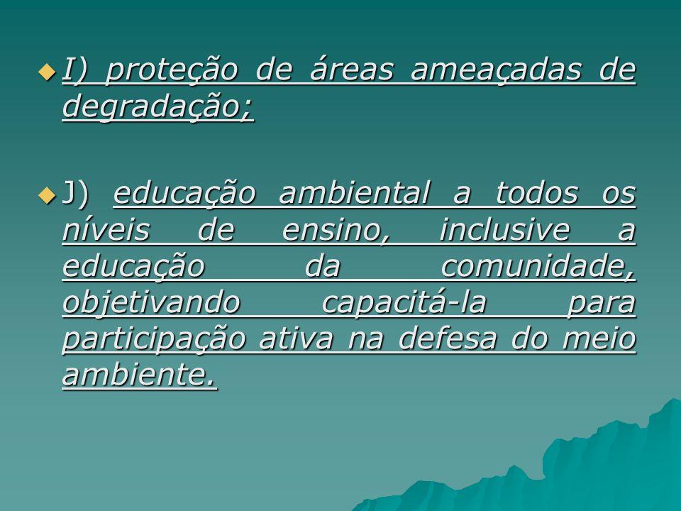 I) proteção de áreas ameaçadas de degradação; I) proteção de áreas ameaçadas de degradação; J) educação ambiental a todos os níveis de ensino, inclusi