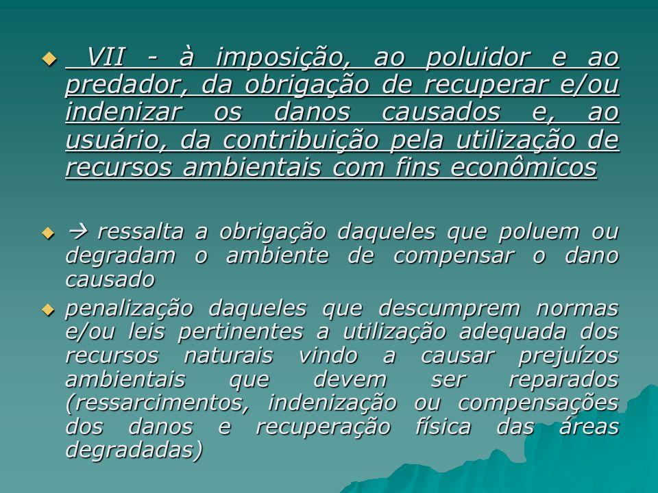 VII - à imposição, ao poluidor e ao predador, da obrigação de recuperar e/ou indenizar os danos causados e, ao usuário, da contribuição pela utilizaçã