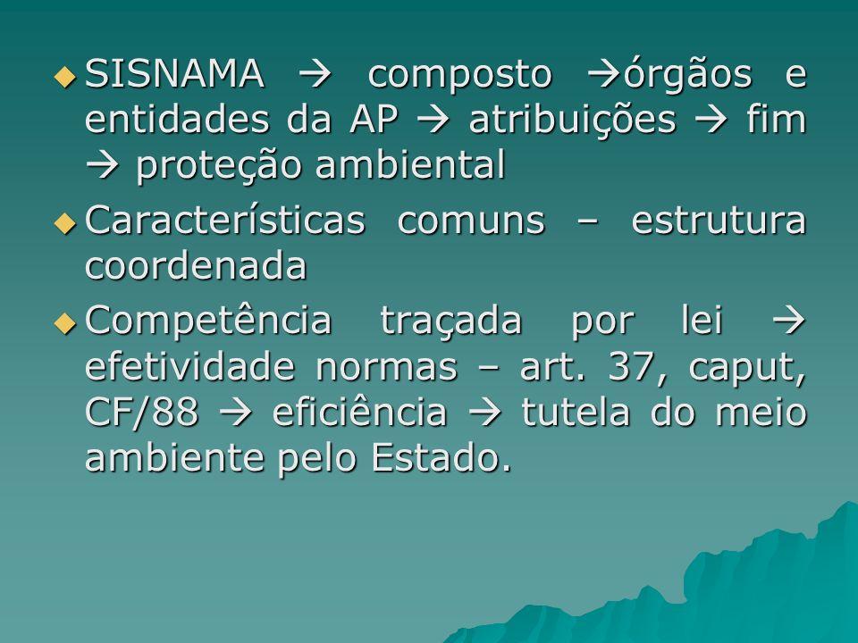 SISNAMA composto órgãos e entidades da AP atribuições fim proteção ambiental SISNAMA composto órgãos e entidades da AP atribuições fim proteção ambien