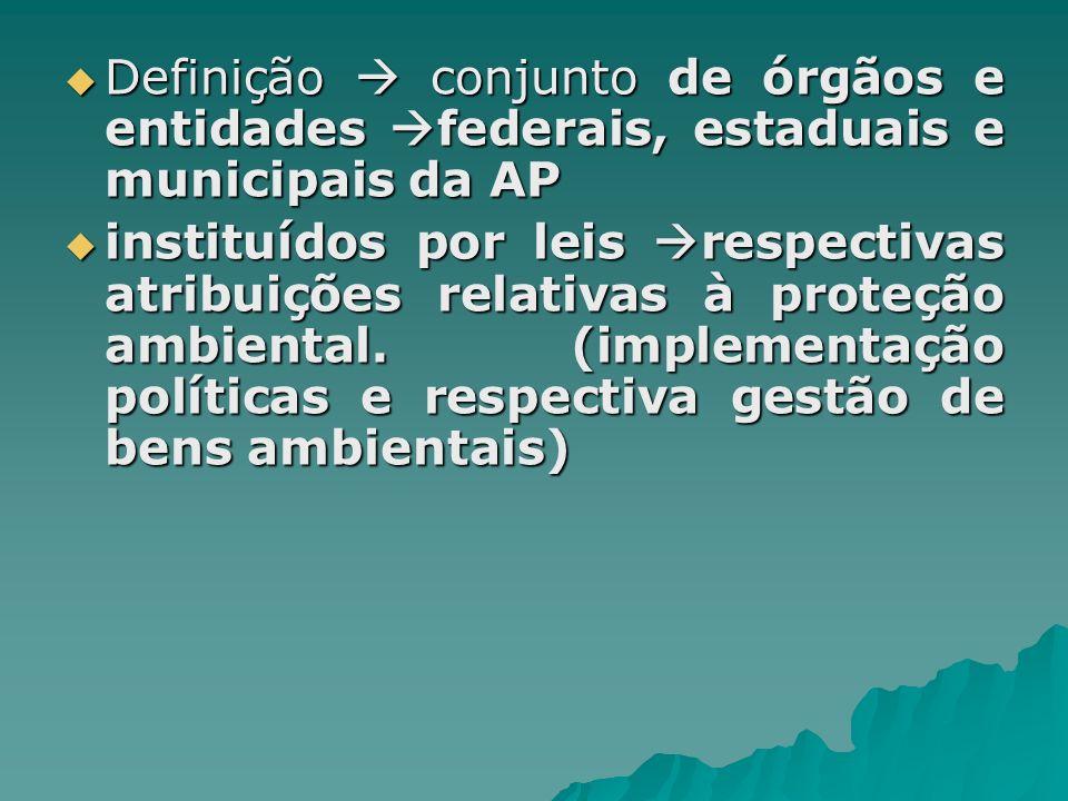 Definição conjunto de órgãos e entidades federais, estaduais e municipais da AP Definição conjunto de órgãos e entidades federais, estaduais e municip