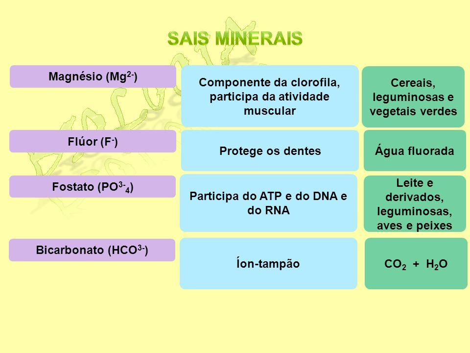 Cálcio (Ca 2+ ) Sódio (Na + ) e potássio (K + ) Ferro (Fe 2+ ) Iodo (I - ) Participa do processo de coagulação sanguínea, contração muscular e formaçã