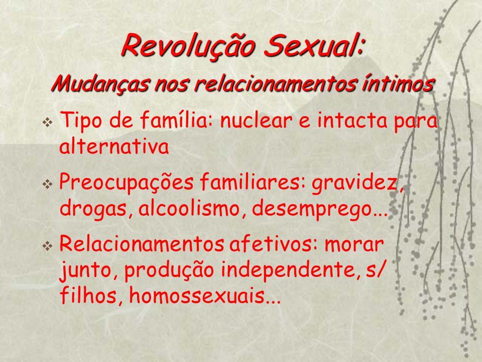 Revolução Sexual: Mudanças nos relacionamentos íntimos Tipo de família: nuclear e intacta para alternativa Preocupações familiares: gravidez, drogas,