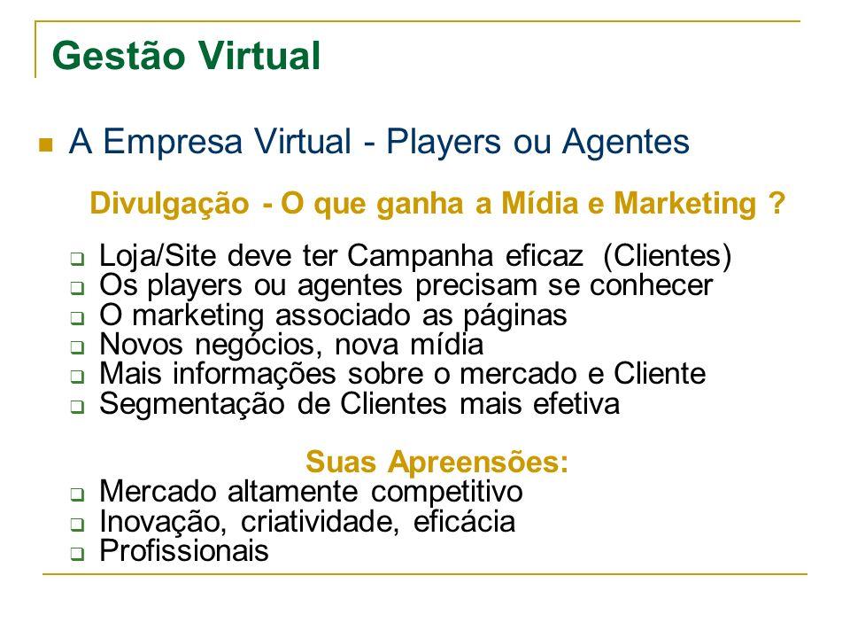 Gestão Virtual A Empresa Virtual - Players ou Agentes Divulgação - O que ganha a Mídia e Marketing ? Loja/Site deve ter Campanha eficaz (Clientes) Os