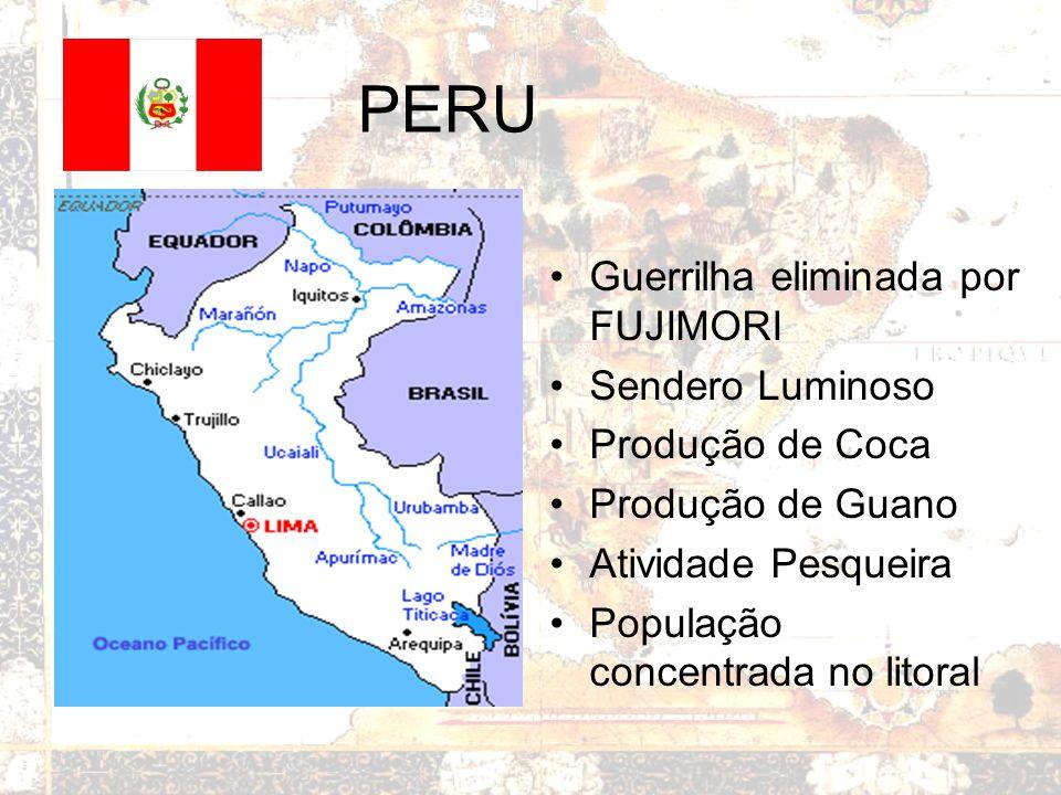 BOLÍVIA País insulado Derrota em Guerras: –Chaco –Pacífico Gás natural Gasoduto Brasil - Bolívia Cocalero na presidência Presença ameríndia