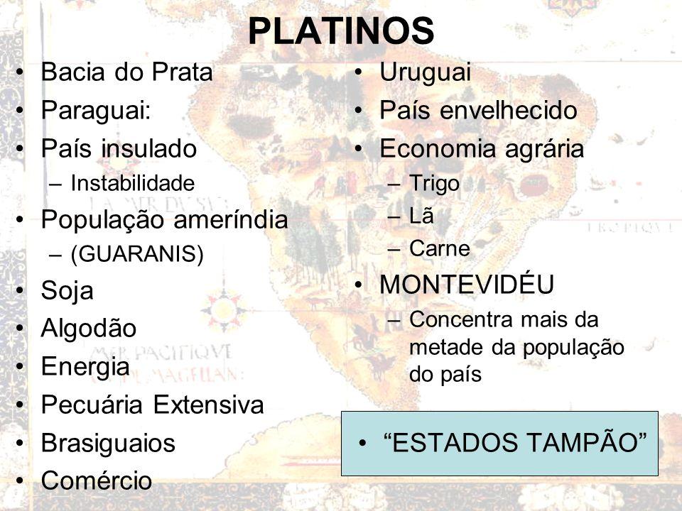 PLATINOS Bacia do Prata Paraguai: País insulado –Instabilidade População ameríndia –(GUARANIS) Soja Algodão Energia Pecuária Extensiva Brasiguaios Comércio Uruguai País envelhecido Economia agrária –Trigo –Lã –Carne MONTEVIDÉU –Concentra mais da metade da população do país ESTADOS TAMPÃO