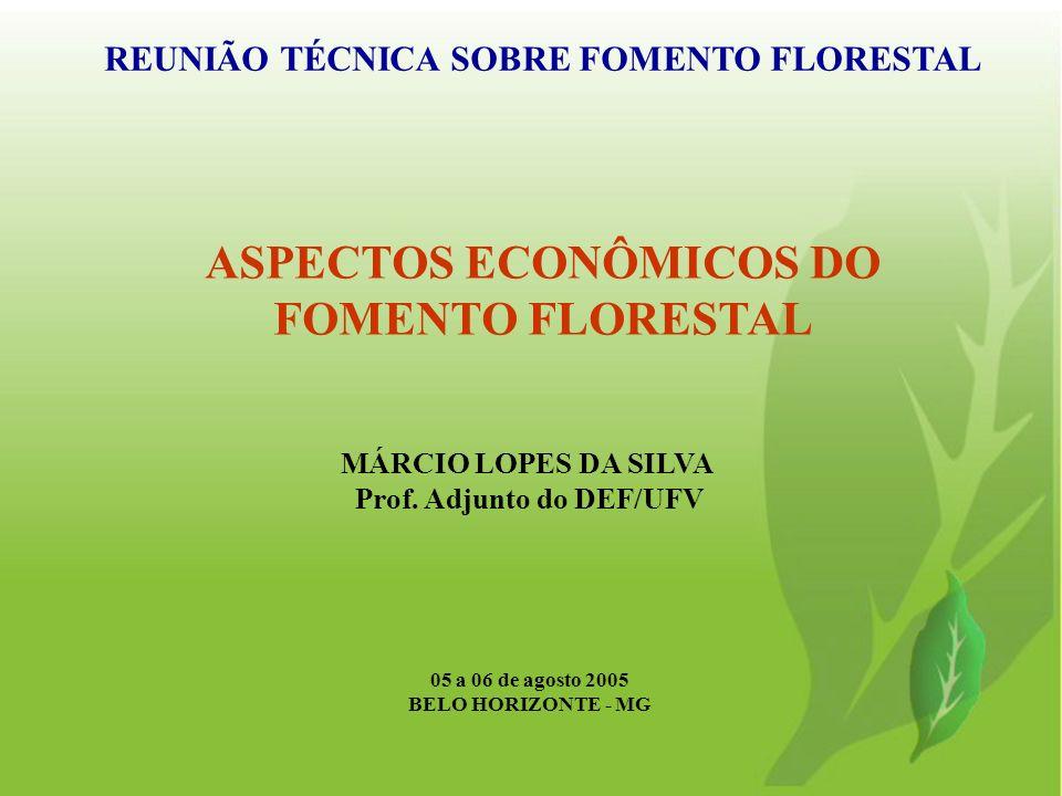 ASPECTOS ECONÔMICOS DO FOMENTO FLORESTAL Uma das principais metas do PNF Entre 2003-05, foram introduzidos mais de 10.000 pequenos e médios produtores rurais Inserção dos produtores foi viabilizada por: i) modelo de integração empresa fomentadora + produtor fomentado; ii) linhas de crédito Propflora e Pronaf Florestal; iii) assistência técnica via Editais do PNF/FNMA/MDA; e iv) outros instrumentos de fomento.