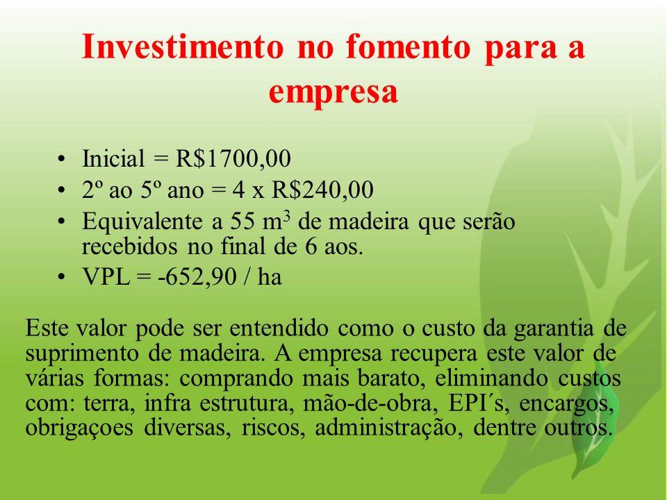 Investimento no fomento para a empresa Inicial = R$1700,00 2º ao 5º ano = 4 x R$240,00 Equivalente a 55 m 3 de madeira que serão recebidos no final de
