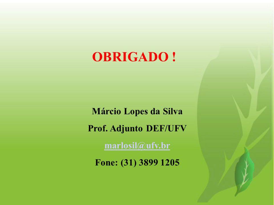 Márcio Lopes da Silva Prof. Adjunto DEF/UFV marlosil@ufv.br Fone: (31) 3899 1205 OBRIGADO !