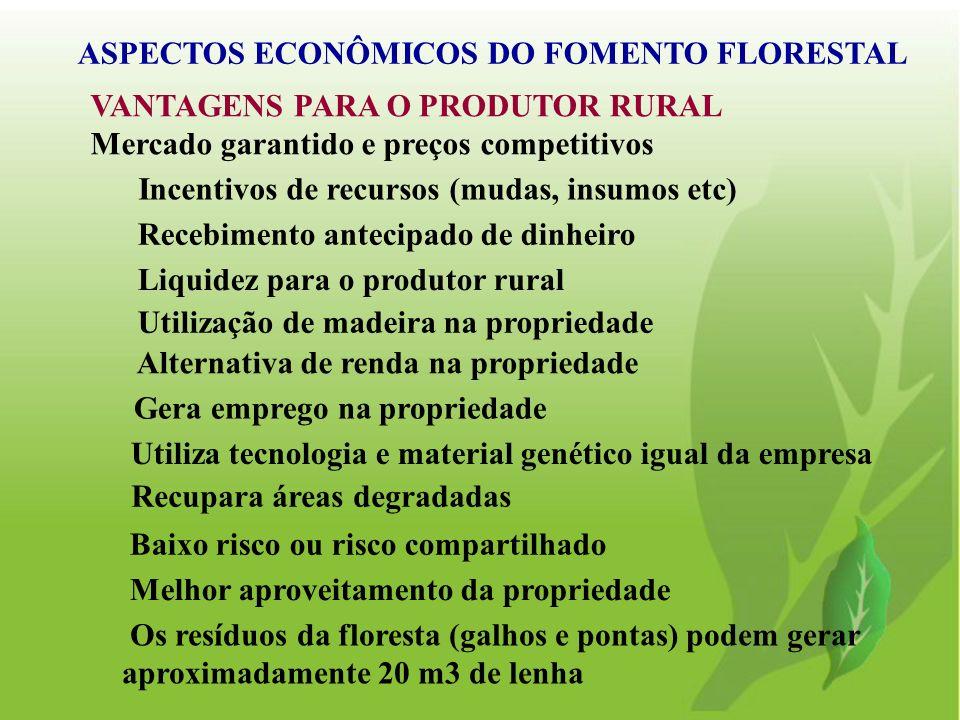 VANTAGENS PARA O PRODUTOR RURAL Mercado garantido e preços competitivos ASPECTOS ECONÔMICOS DO FOMENTO FLORESTAL Incentivos de recursos (mudas, insumo