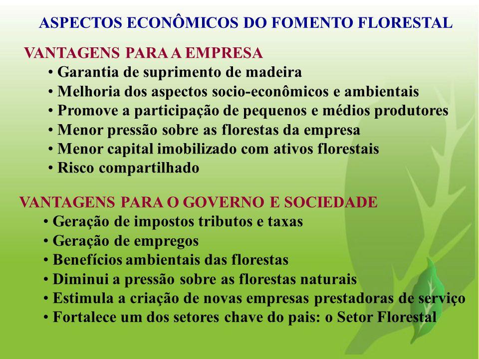 VANTAGENS PARA A EMPRESA Garantia de suprimento de madeira Melhoria dos aspectos socio-econômicos e ambientais Promove a participação de pequenos e mé