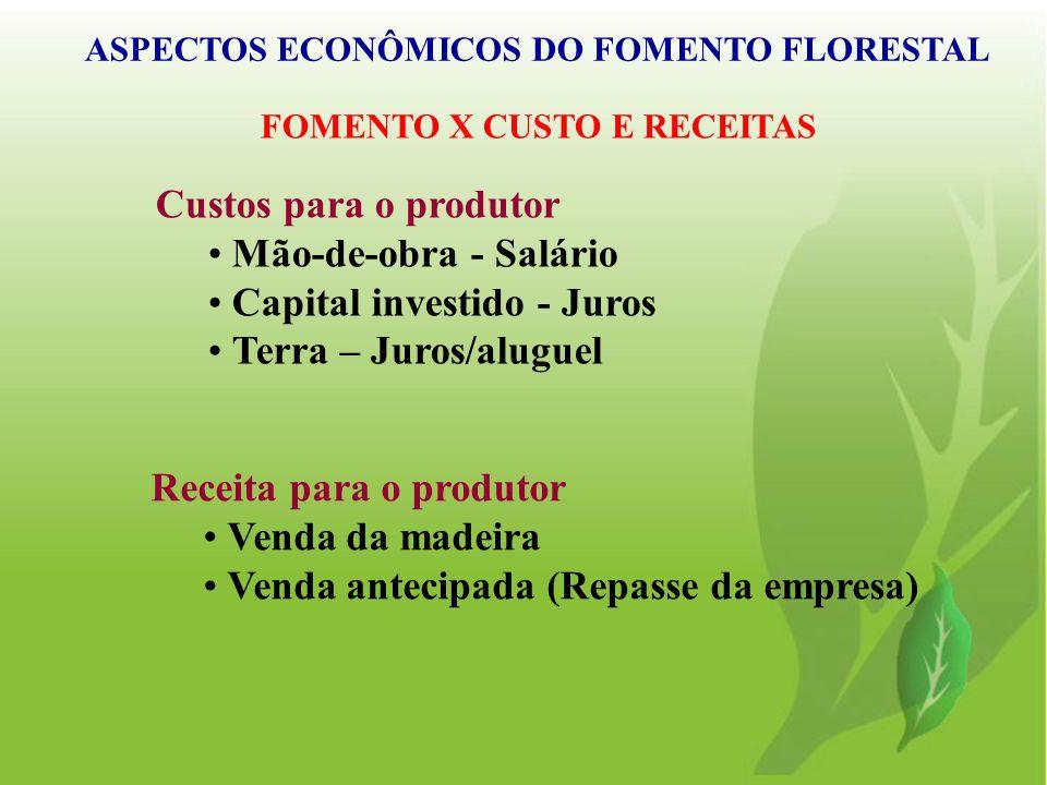 Custos para o produtor Mão-de-obra - Salário Capital investido - Juros Terra – Juros/aluguel Receita para o produtor Venda da madeira Venda antecipada