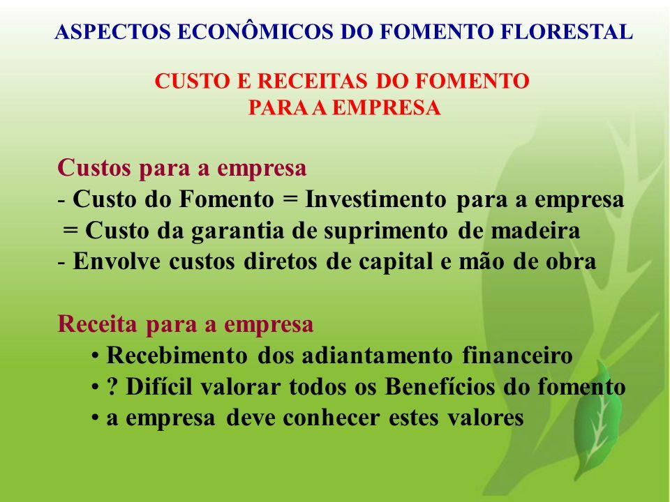 Custos para a empresa - Custo do Fomento = Investimento para a empresa = Custo da garantia de suprimento de madeira - Envolve custos diretos de capita