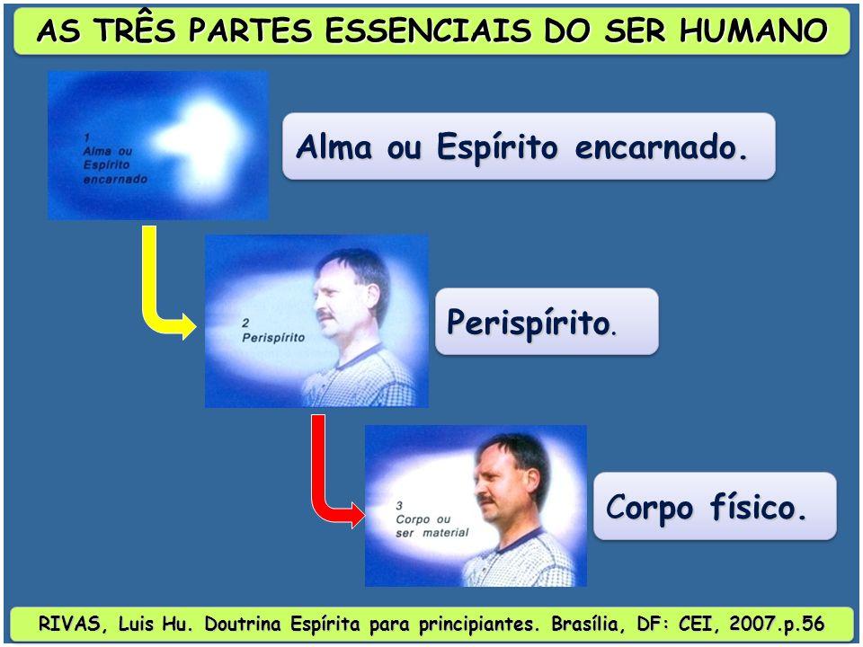 RIVAS, Luis Hu.Doutrina Espírita para principiantes.