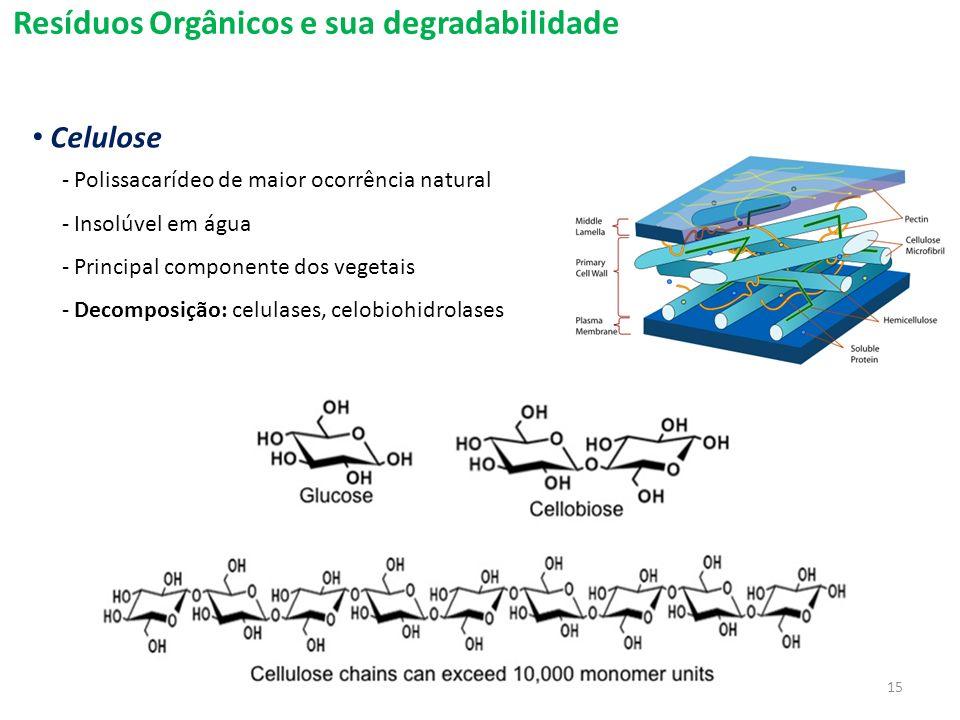 Resíduos Orgânicos e sua degradabilidade Celulose - Polissacarídeo de maior ocorrência natural - Insolúvel em água - Principal componente dos vegetais