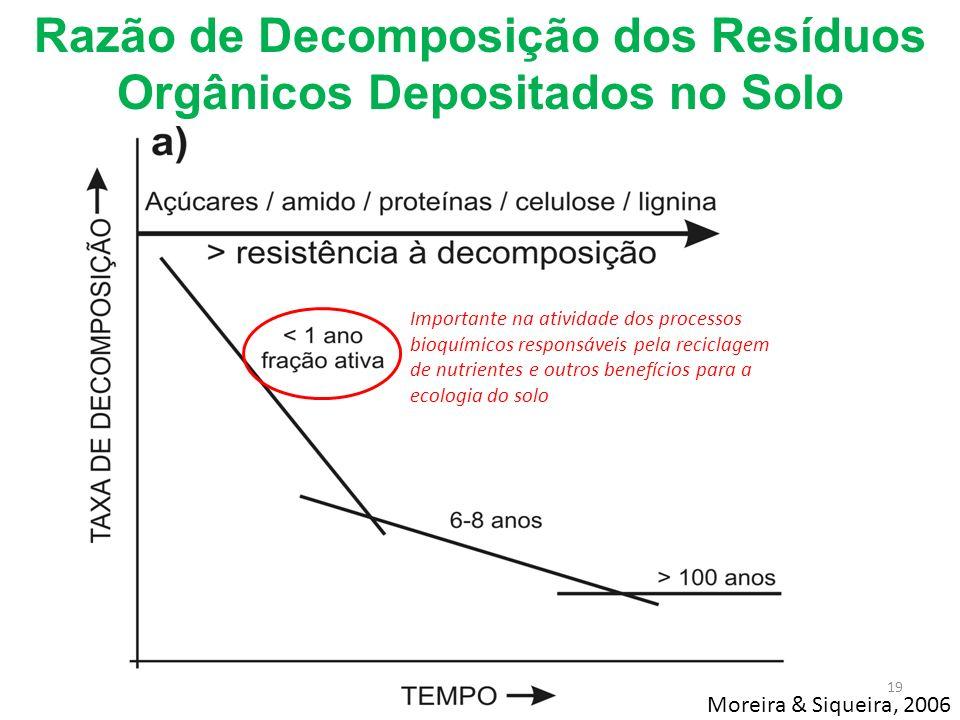 Importante na atividade dos processos bioquímicos responsáveis pela reciclagem de nutrientes e outros benefícios para a ecologia do solo Razão de Deco