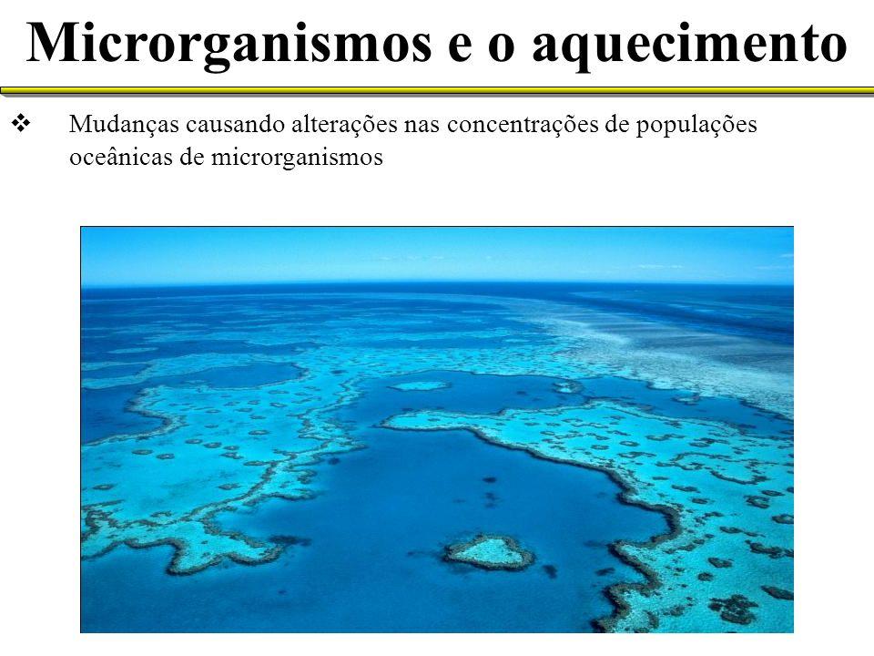 Mudanças causando alterações nas concentrações de populações oceânicas de microrganismos Microrganismos e o aquecimento