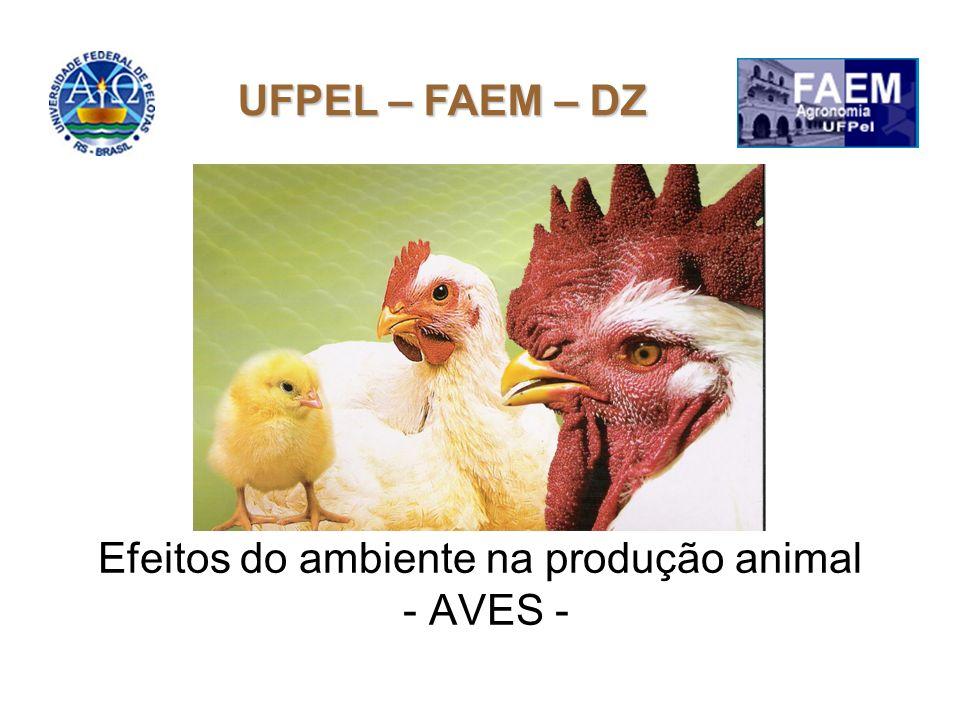 Efeitos do ambiente na produção animal - AVES - UFPEL – FAEM – DZ