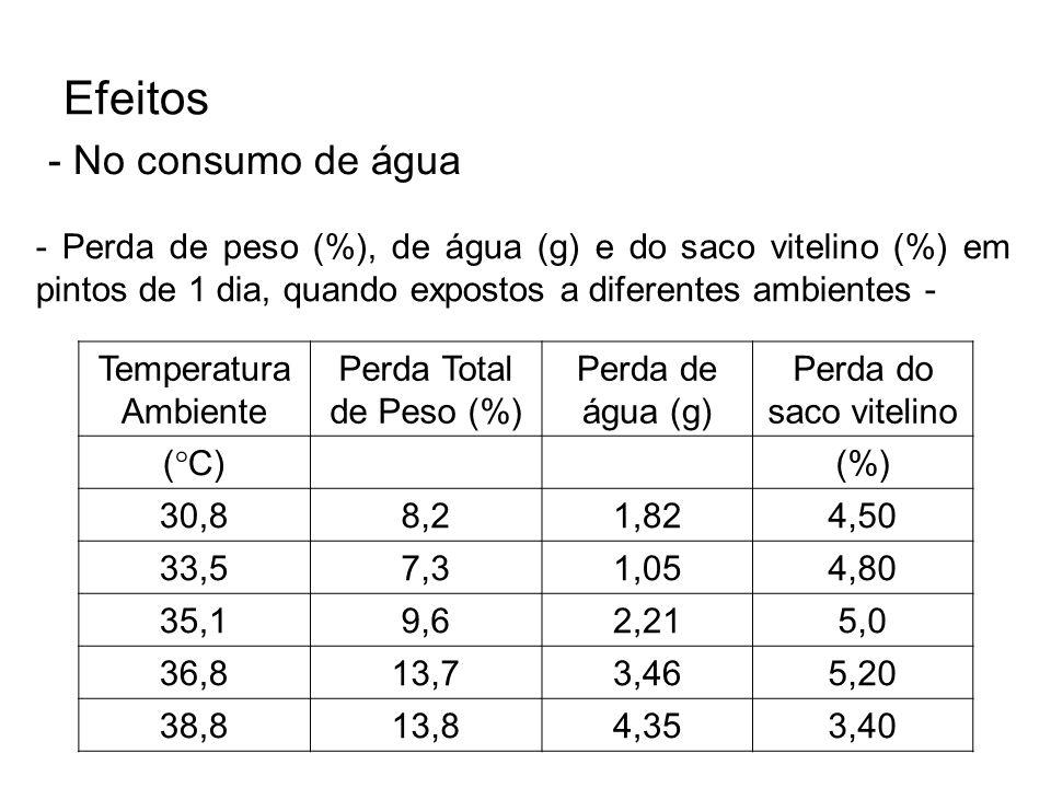 Efeitos - No consumo de água - Perda de peso (%), de água (g) e do saco vitelino (%) em pintos de 1 dia, quando expostos a diferentes ambientes - Temp