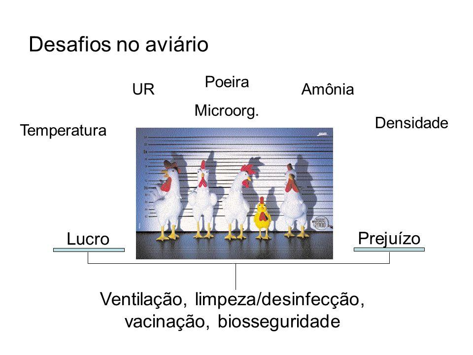 Desafios no aviário Ventilação, limpeza/desinfecção, vacinação, biosseguridade Temperatura UR Poeira Microorg. Amônia Densidade Lucro Prejuízo