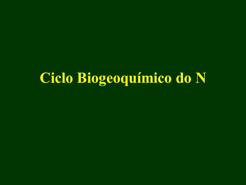 1.2 Nitrogênio inorgânico oxidado - várias espécies e estados de valência - NOy: NO (g) + NO 2 (g) + HNO 3 (g) +....