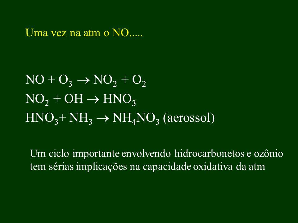 Uma vez na atm o NO..... NO + O 3 NO 2 + O 2 NO 2 + OH HNO 3 HNO 3 + NH 3 NH 4 NO 3 (aerossol) Um ciclo importante envolvendo hidrocarbonetos e ozônio