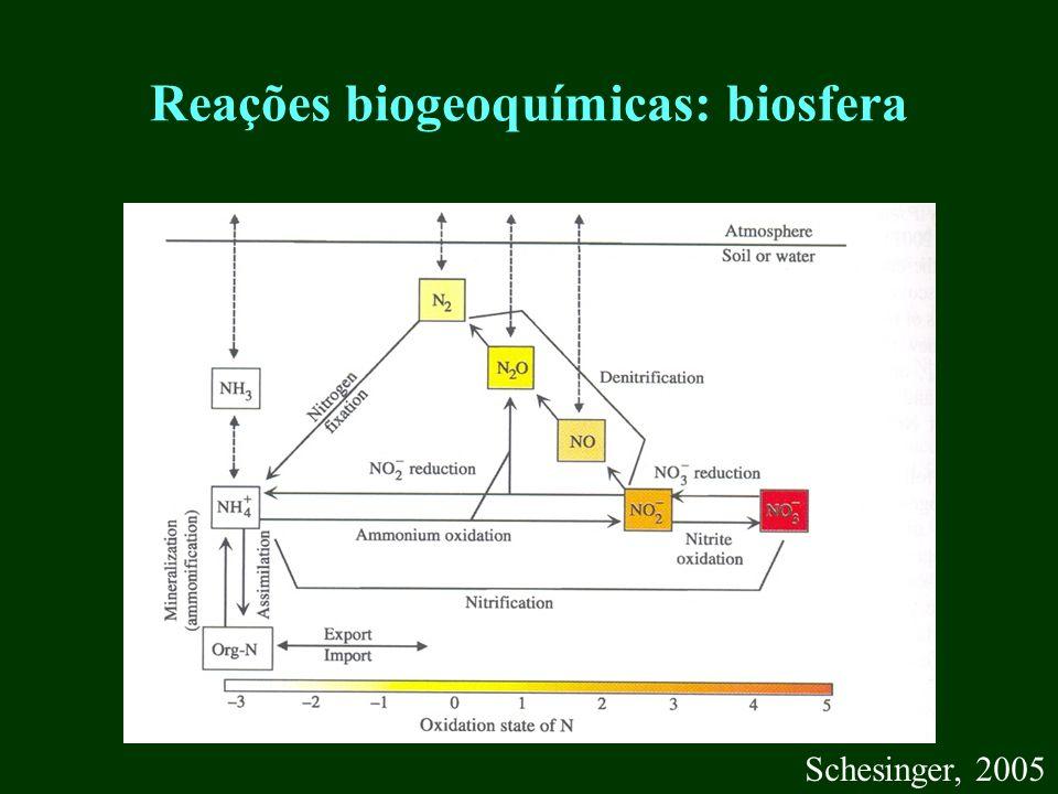 Reações biogeoquímicas: biosfera Schesinger, 2005